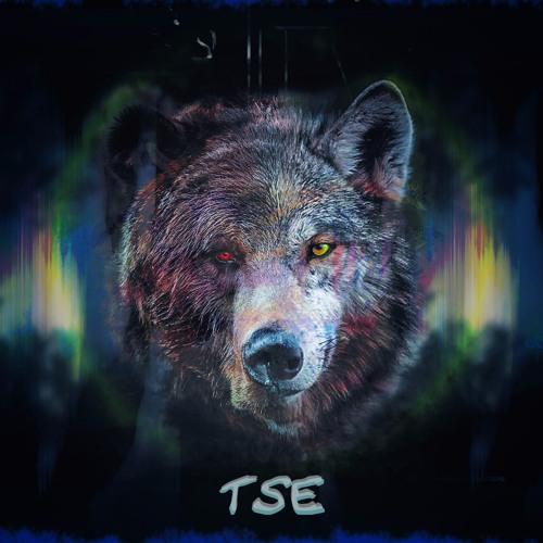 *TSE*'s avatar