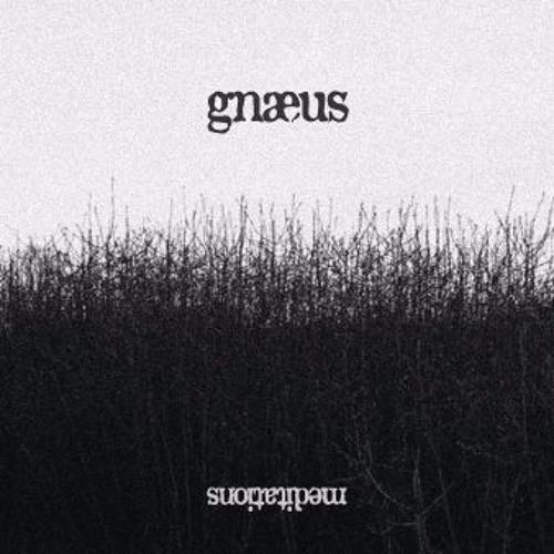 Gnaeus's avatar