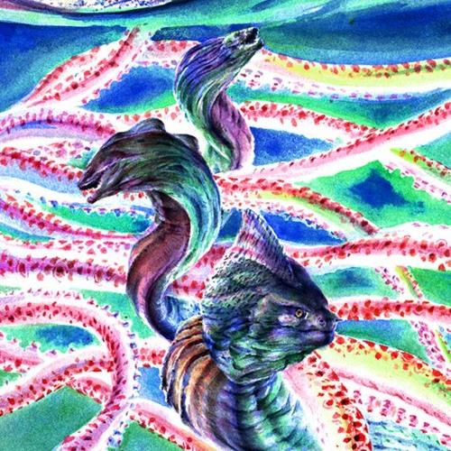 Eels Of Love's avatar