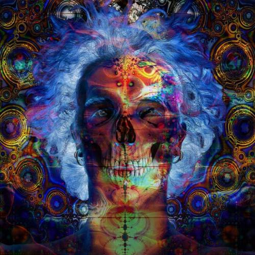 Hypnotic Mushroom - Dark Castle