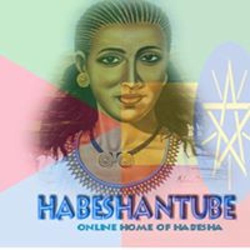 Habeshan Tube's avatar