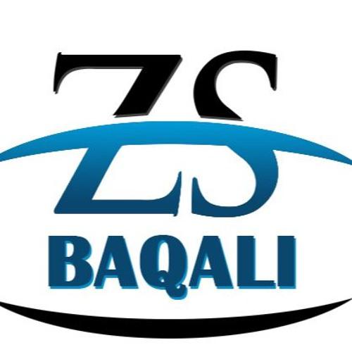 Zsbaqali's avatar