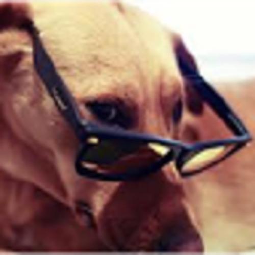 Codie Parker's avatar
