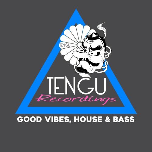 Tengu Recordings's avatar