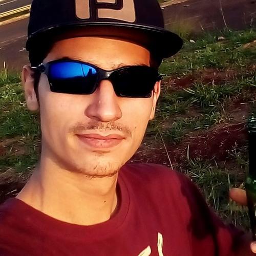 Leonardo Fontinhas's avatar