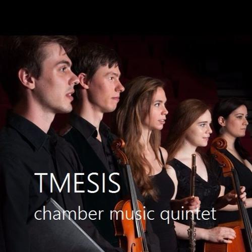 Tmesis - chamber music quintet's avatar