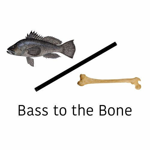 Bass to the Bone's avatar