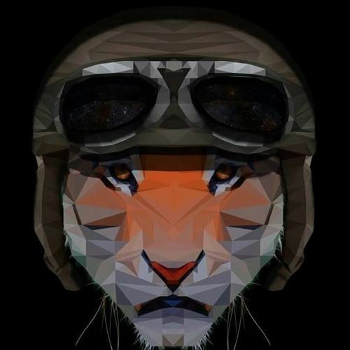 Tiger Bomber's avatar