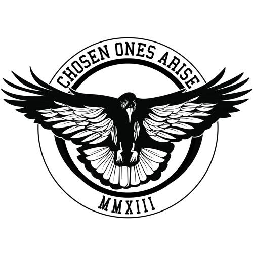 Chosen Ones Arise's avatar