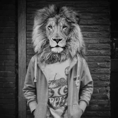 Mark Lion ✪'s avatar