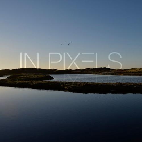 In Pixels's avatar