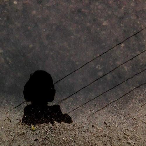 Norbert Paliwoda's avatar