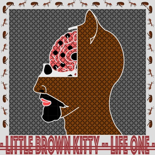 Little Brown Kitty's avatar