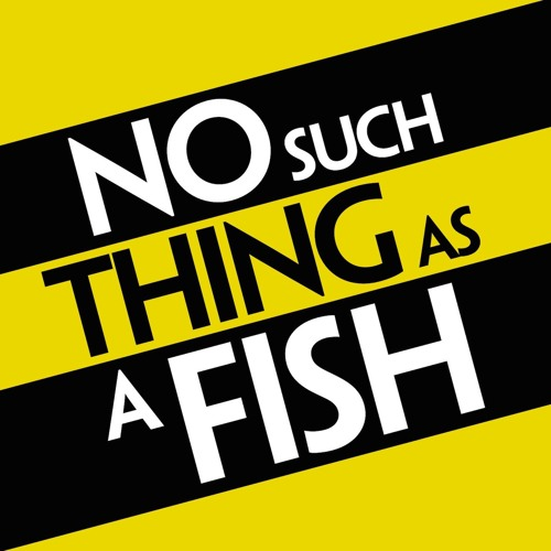 No Such Thing As A Fish's avatar