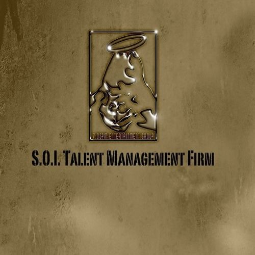 S.O.I. Talent Management Firm's avatar