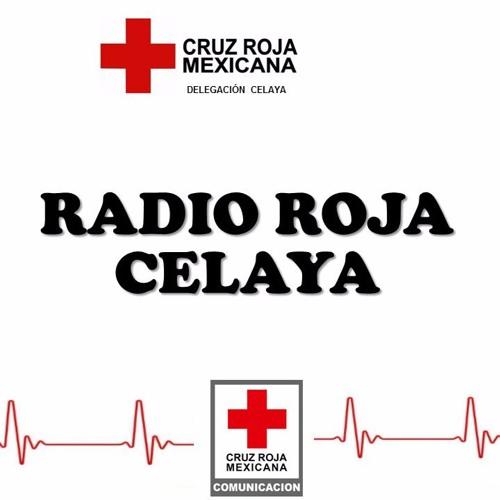 Radio Roja Celaya's avatar