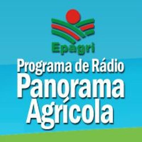 Epagri  / Rádio's avatar