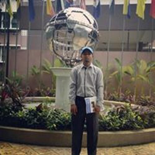 Manung Maung Tin's avatar