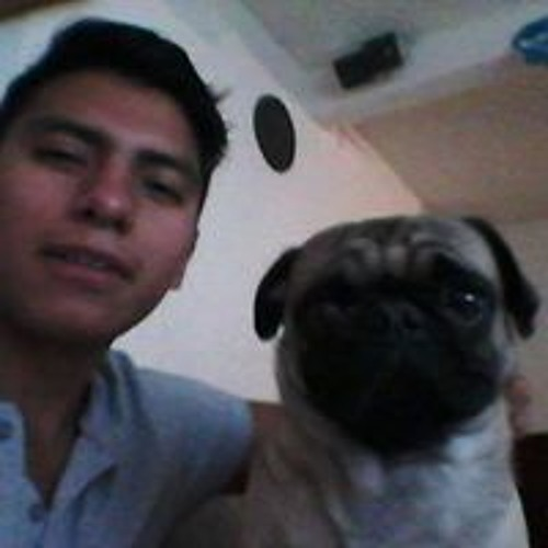 Alejandro Warneros's avatar