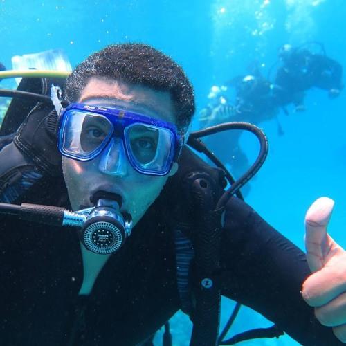 Mahmoud Shalaby 11's avatar