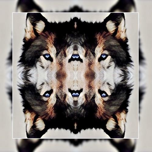 KanerD's avatar