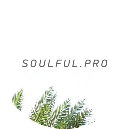 soulful.pro's avatar