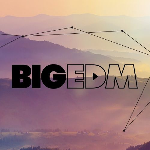 Big EDM Sounds Network's avatar