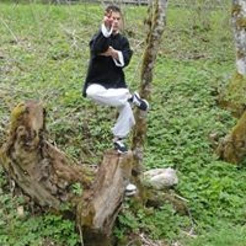 Armin Sharifi's avatar