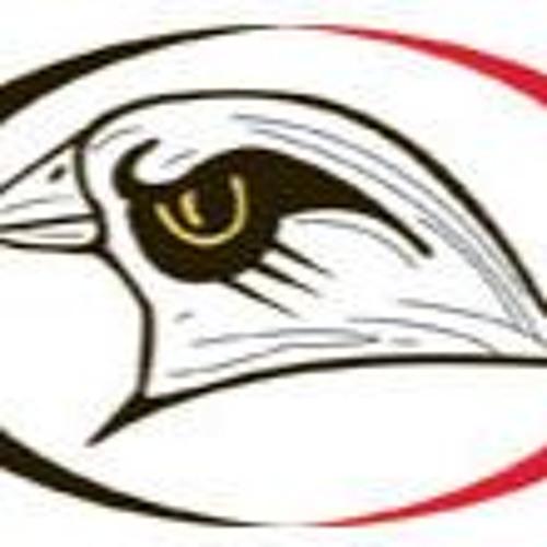 RRHS HawkPride's avatar