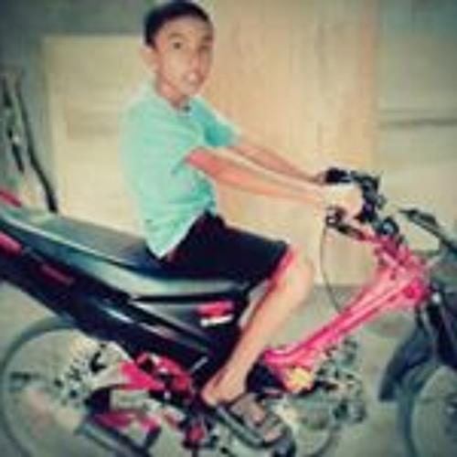Arif Lamongi's avatar