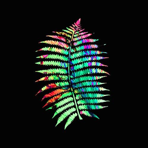 The Psychic Ferns's avatar