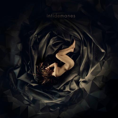 intinet's avatar
