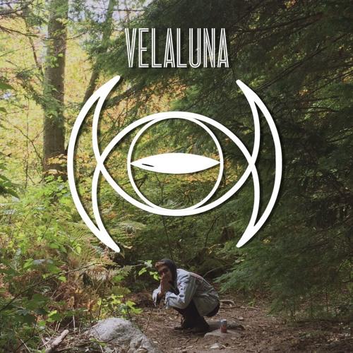 VELALUNA's avatar