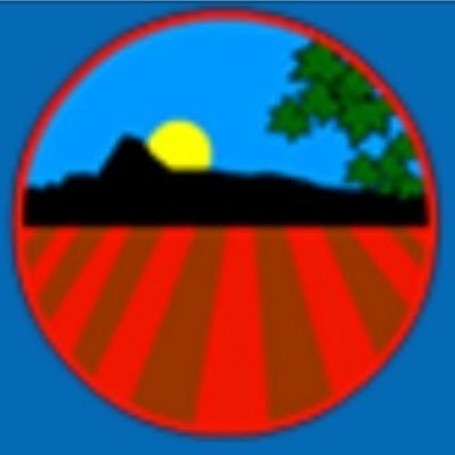 Scoil Mhuire Davidstown's avatar
