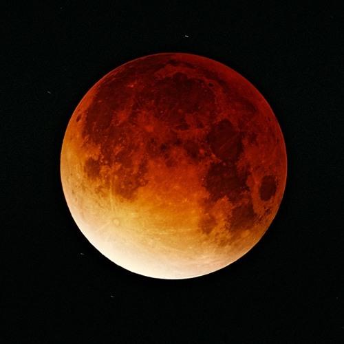 Ekliptik's avatar