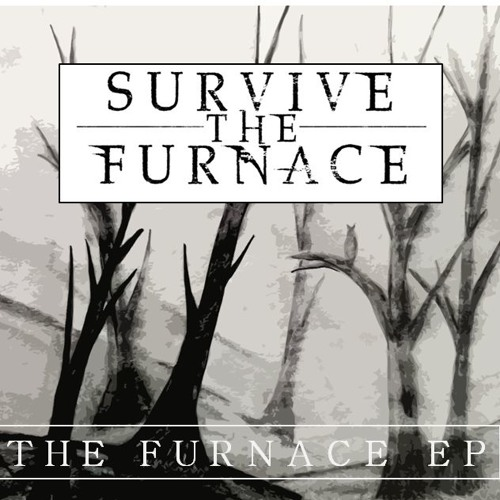 Survive The Furnace's avatar