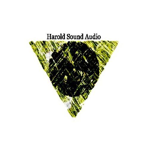 Harold Sound's avatar