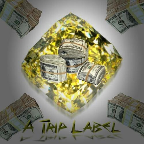 A TRIP LABEL's avatar