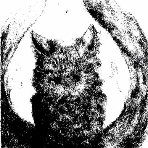 Nekomata's avatar