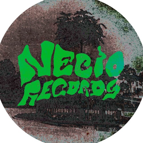 Necio Records's avatar