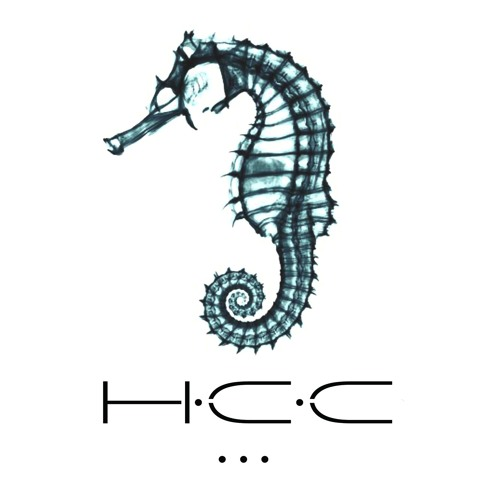 Hippocamp Circus Club's avatar