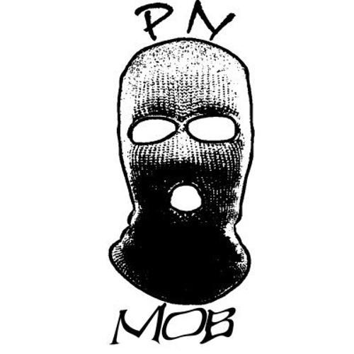 PN Levi's avatar