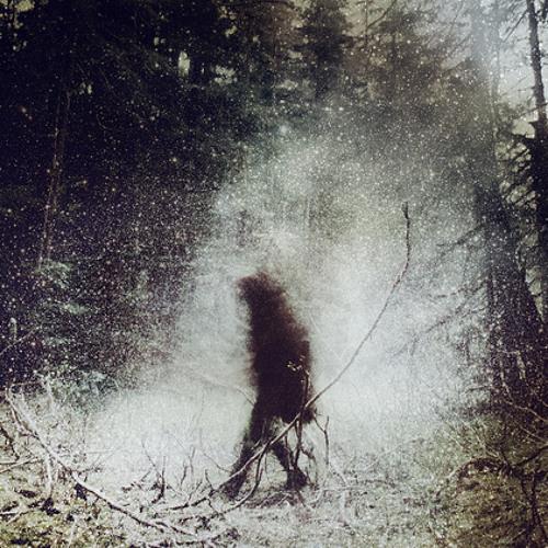 rorakuw's avatar