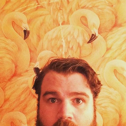 Dan Maxwell's avatar