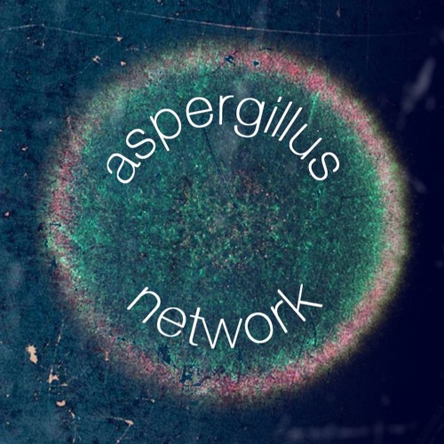 aspergillus's avatar