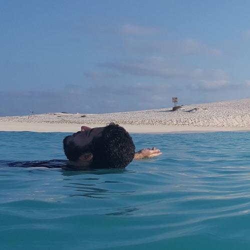 Ali M. Abdulhalim's avatar