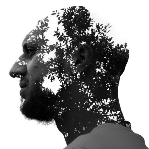 Wundaland's avatar