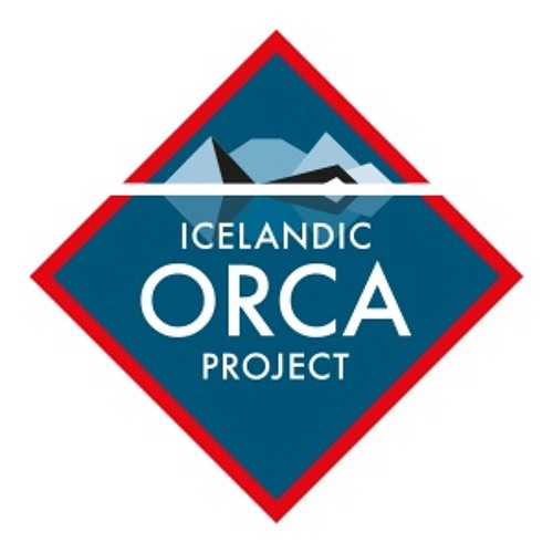 Icelandic Orca Project's avatar