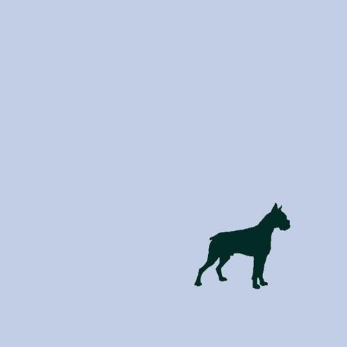 BOXER's avatar