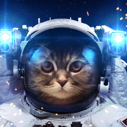 DeepAstronaut Kittie Music's avatar